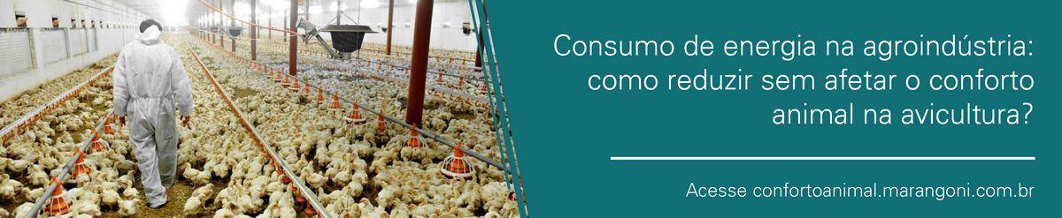 consumo-energia-destaque-site-01-01